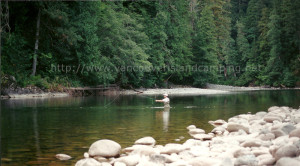 fly fishing for steelhead on the Gold River