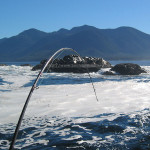 Saltwater Fishing in Nootka Sound