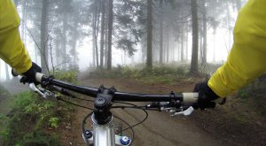 mountain biking in Gold River